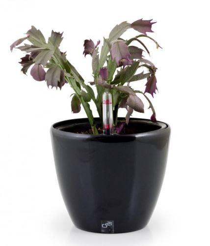 Samozavlažovací kvetináč G21 Ring mini černý 15cm