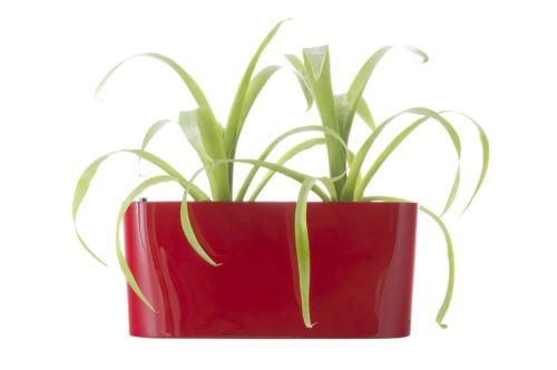 Samozavlažovací kvetináč G21 Combi mini červený 40 cm 6392501