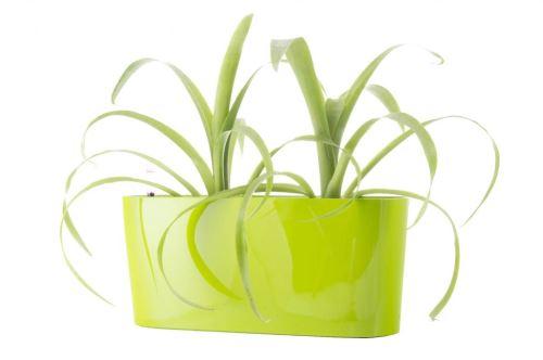 Samozavlažovací kvetináč G21 Combi mini zelený 40cm